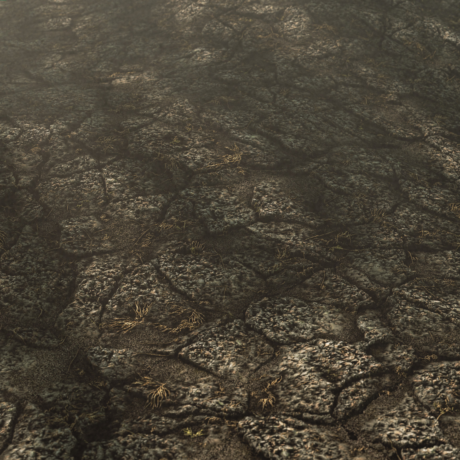 Cem tezcan hard soil ground 00001 beauty