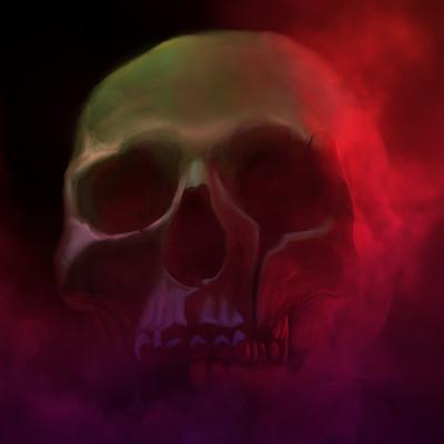 Nik causevig skull final