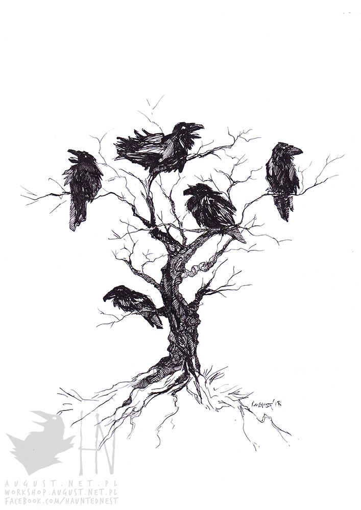 Day 16 - Angular.