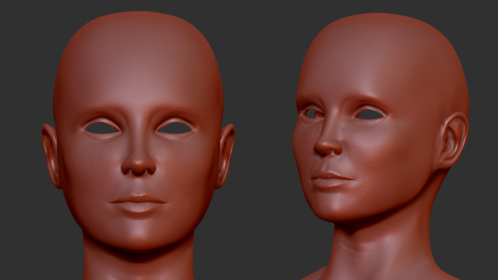 Head sculpt in ZBrush