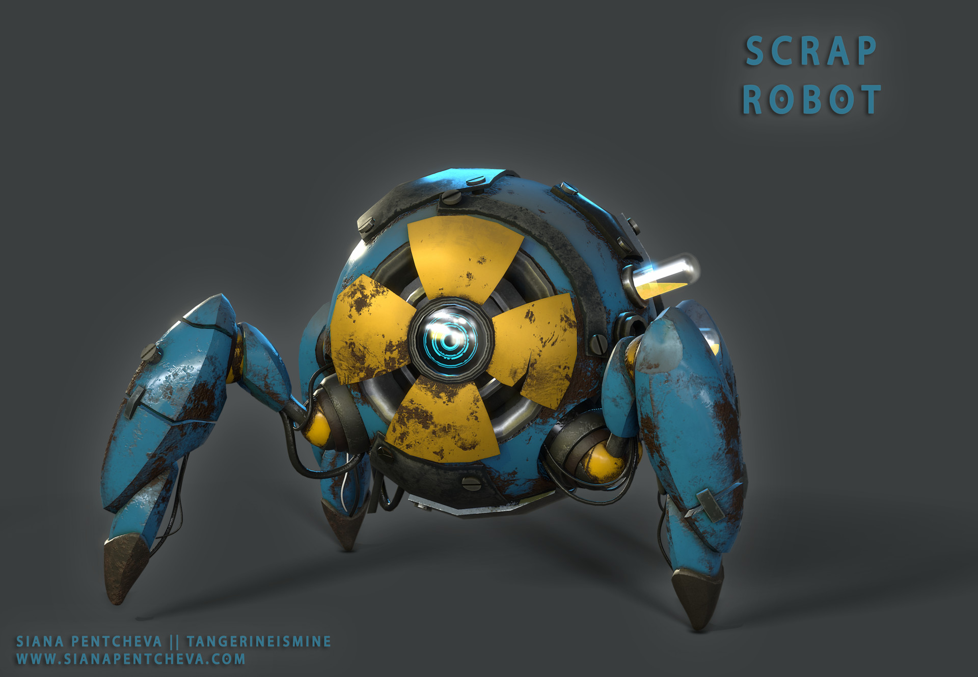 Siana pentcheva robot only2