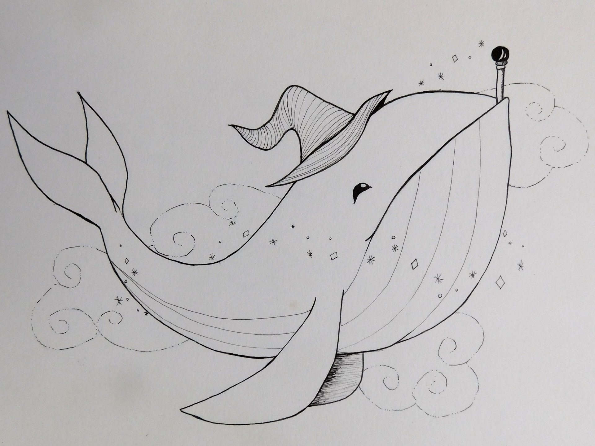 Jessi olney whale