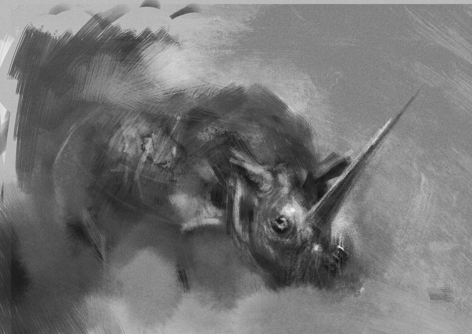 unicorn ( studies )