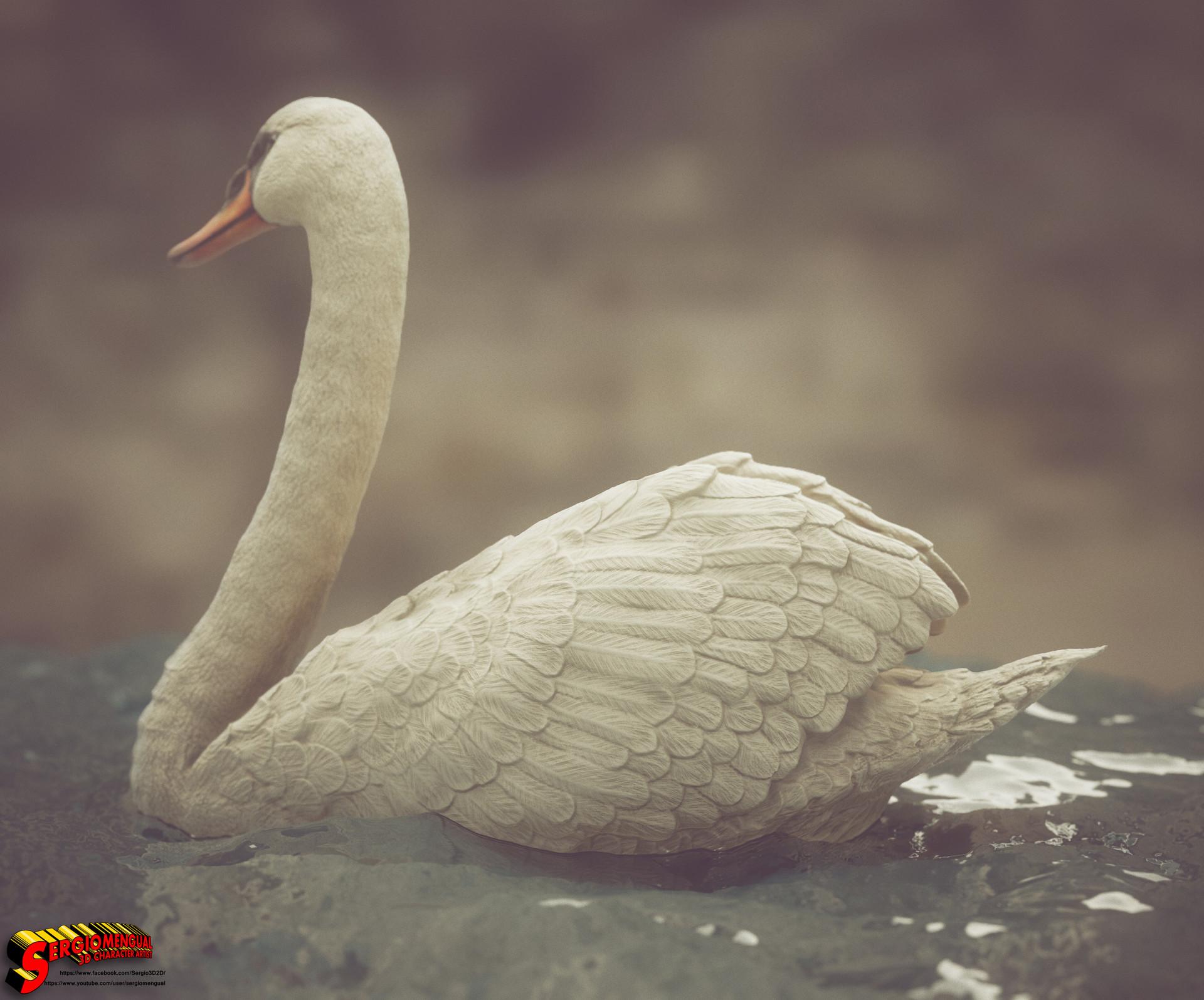 Sergio gabriel mengual swan square 9