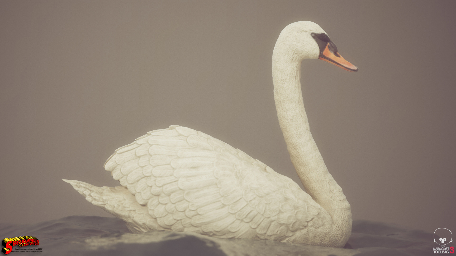 Sergio gabriel mengual swan horizontal 1