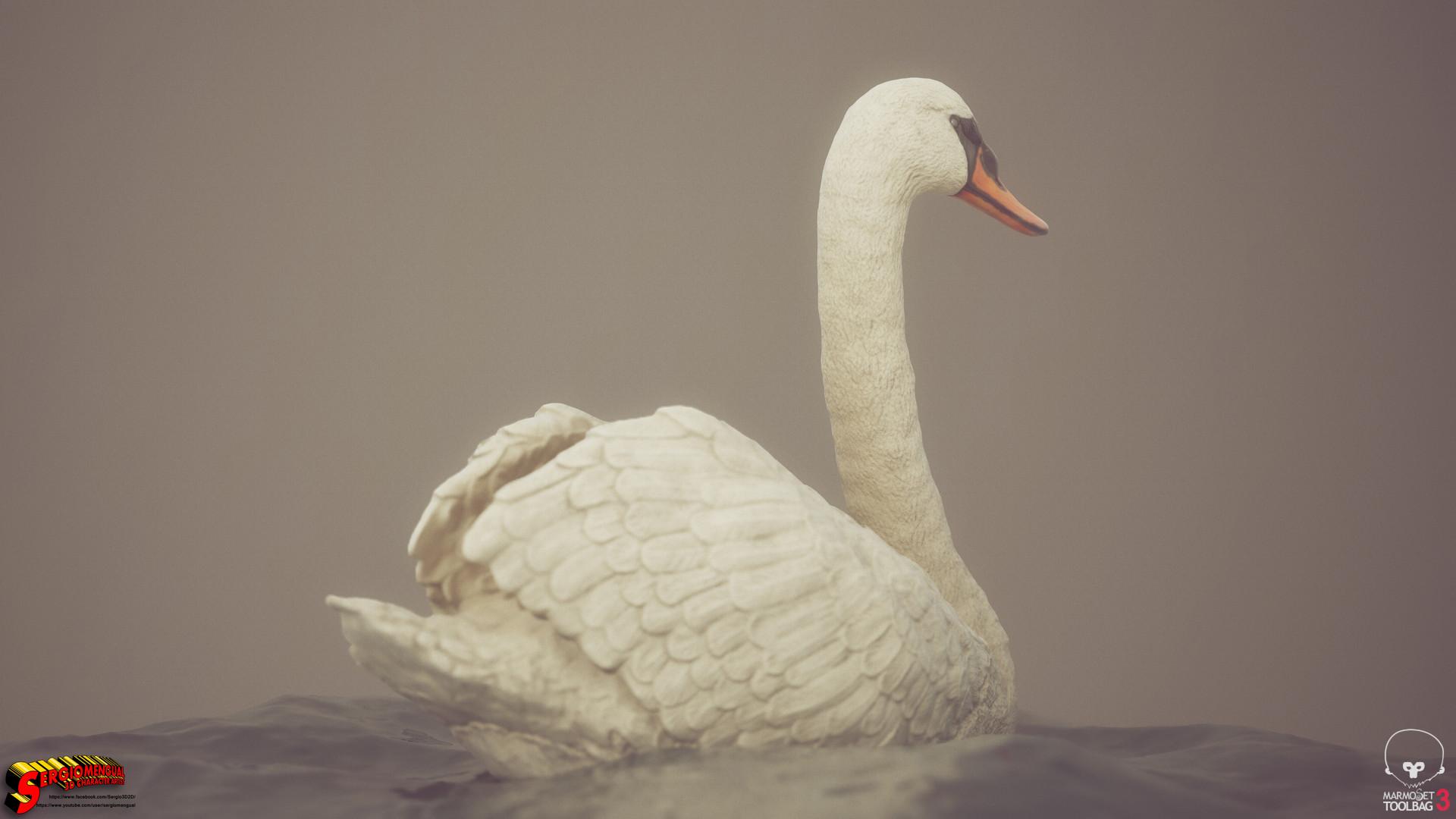 Sergio gabriel mengual swan horizontal 2