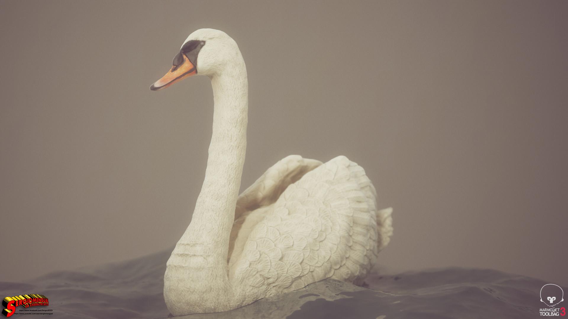 Sergio gabriel mengual swan horizontal 4