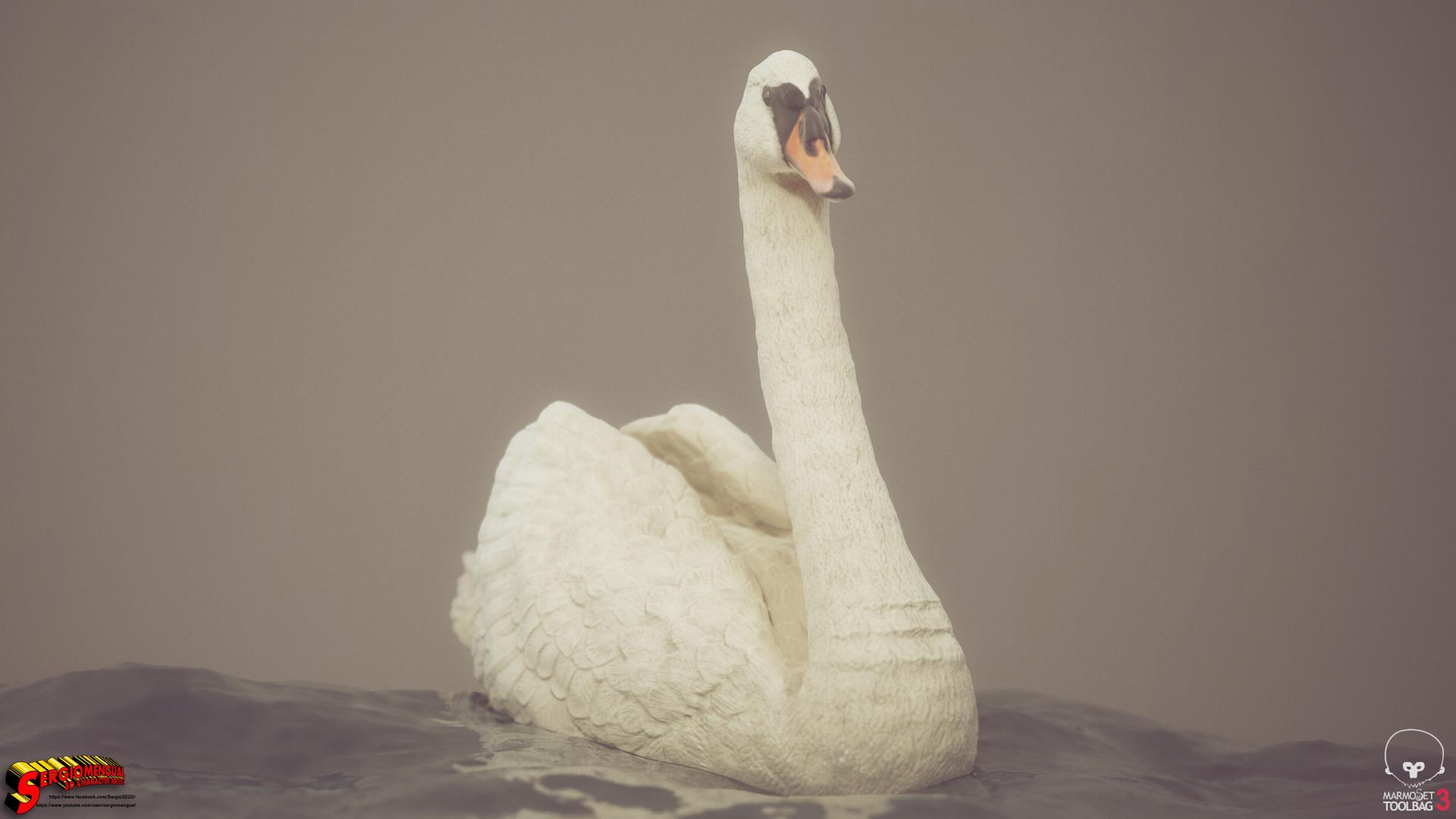 Sergio gabriel mengual swan horizontal 5
