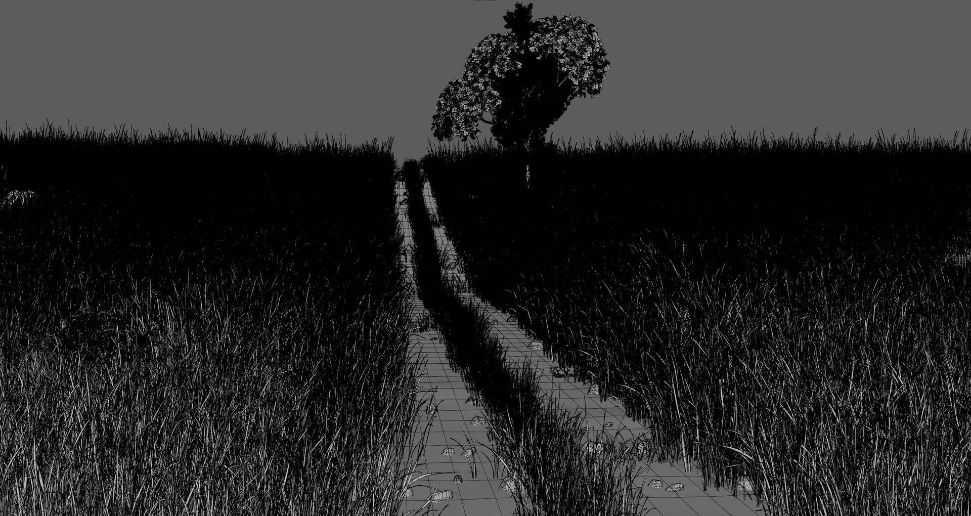 Marc mons path8