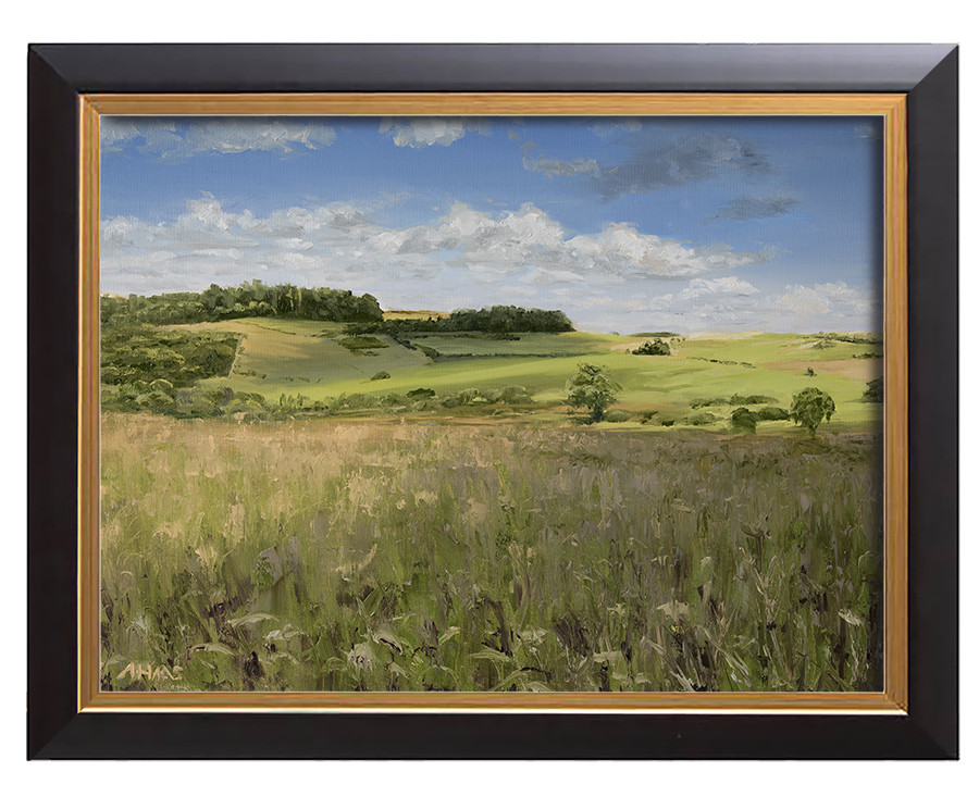 Arthur haas fleeting shadows framed small