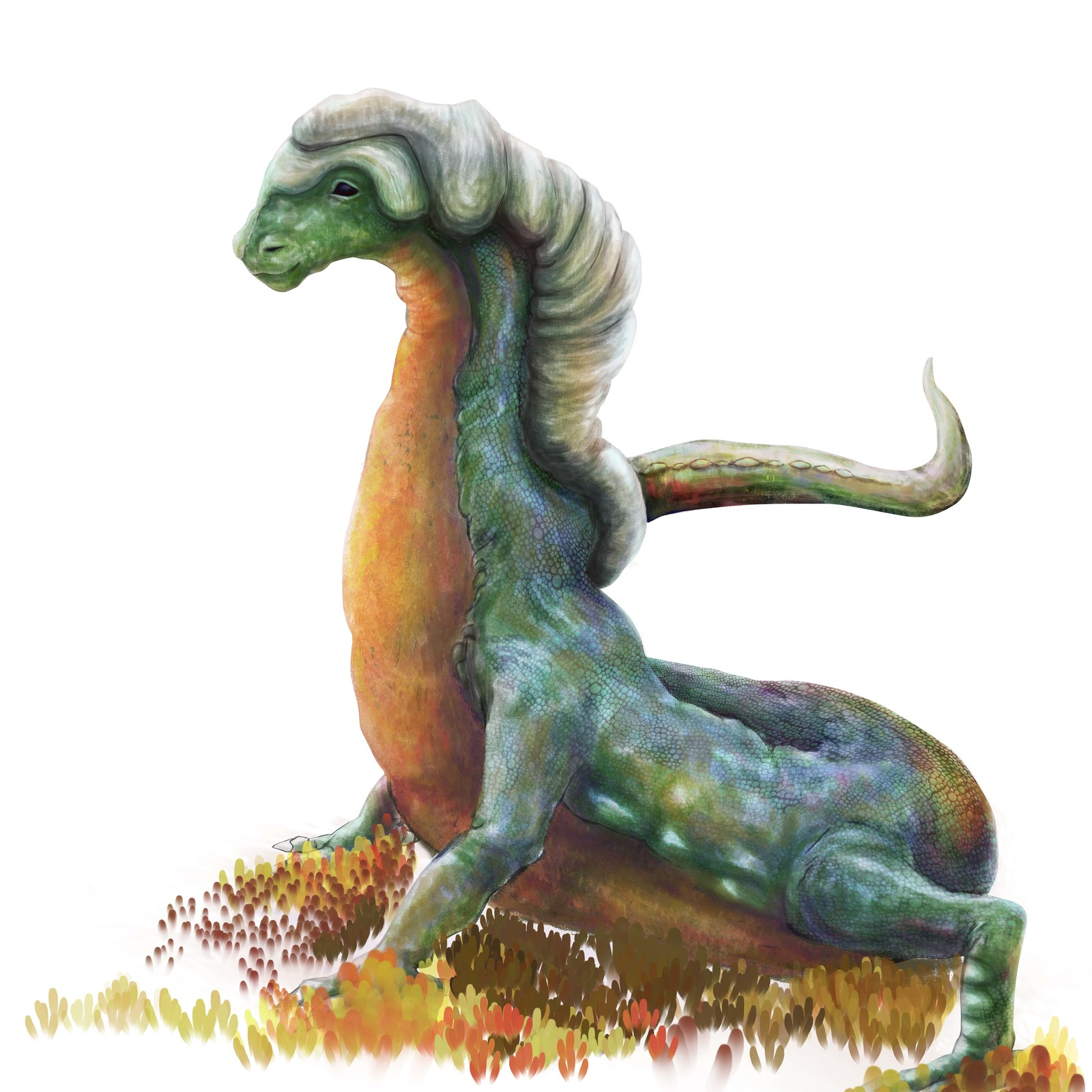 Largarto - reptile