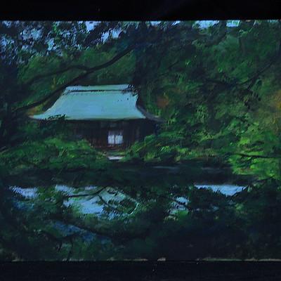 Ryoanji kyoto back yard.