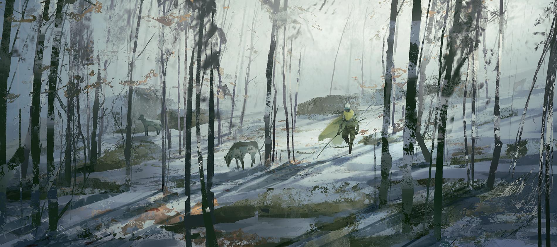 Jaromir hrivnac 20181110 forest2