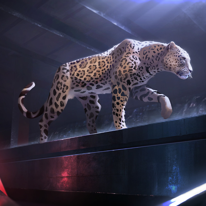 Jaguar - A Breed Apart|Making of