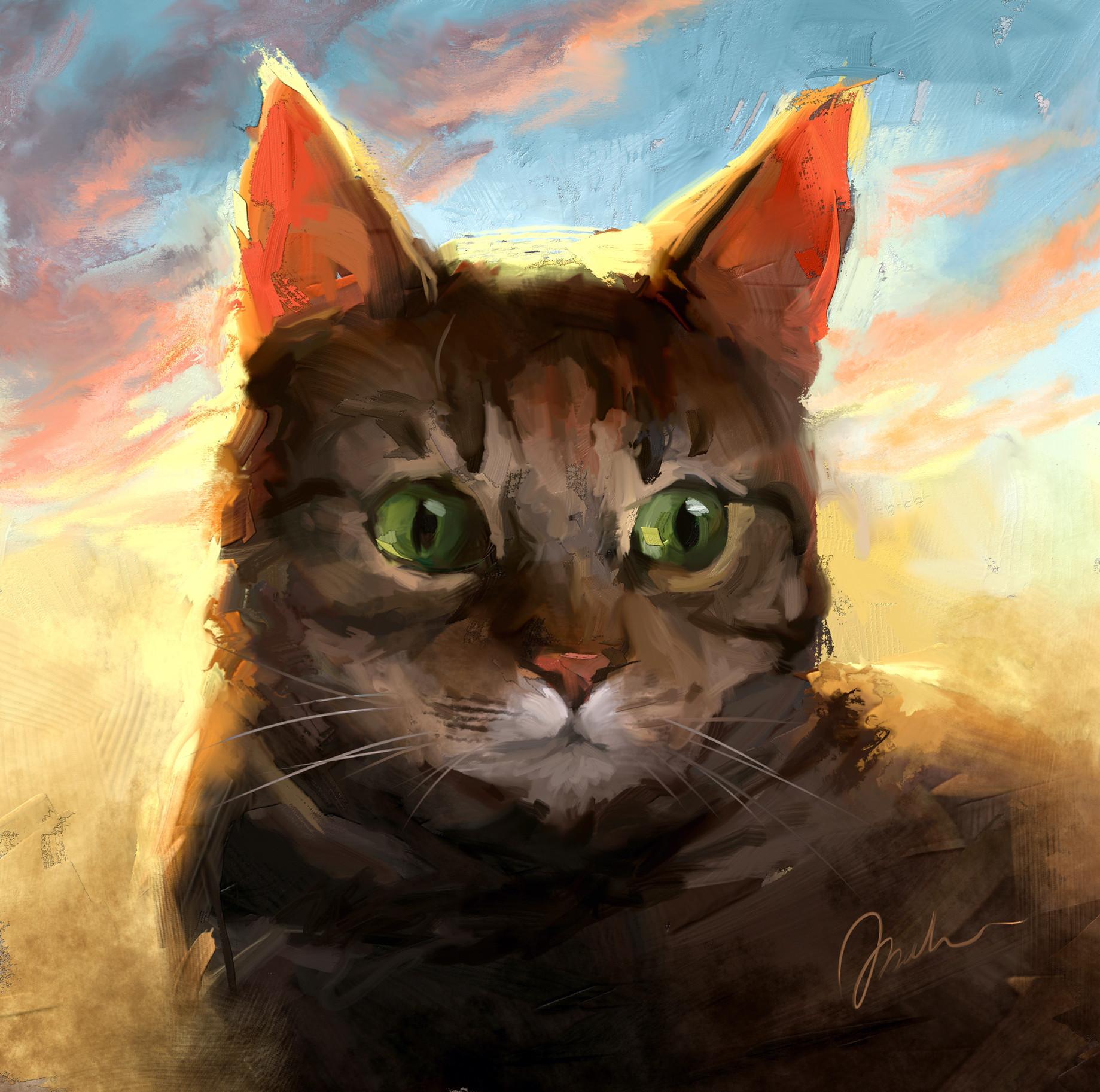 Magda proski cat