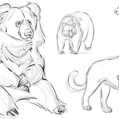 Rachel wilson animal sketches 1 copy