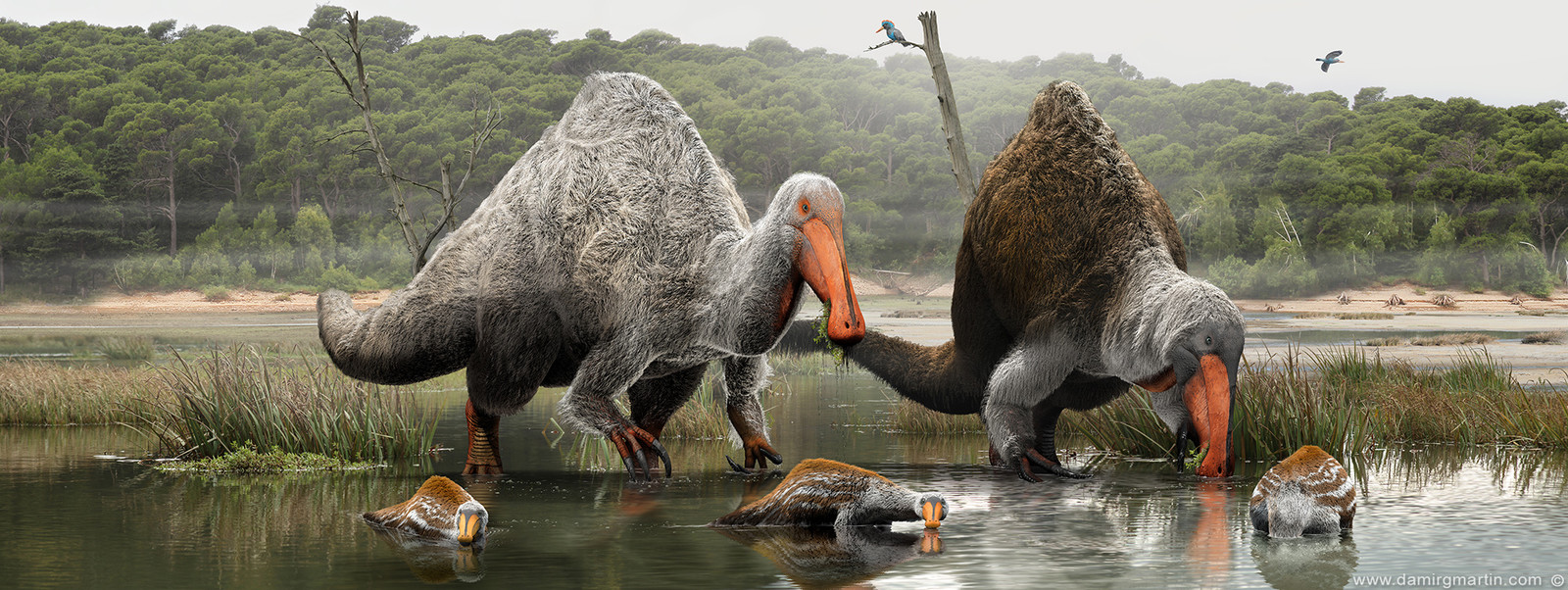 Deinocheirus family portrait