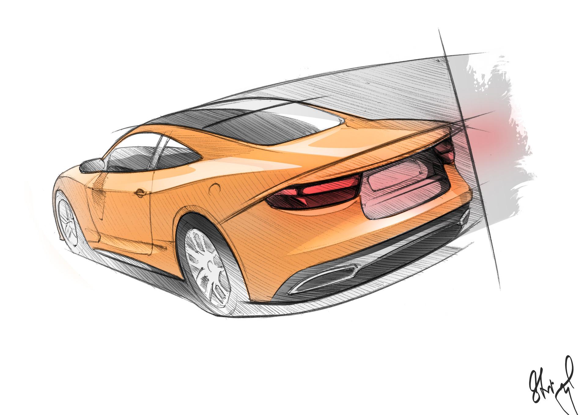 David stingl tauler yellow tail sketch 2