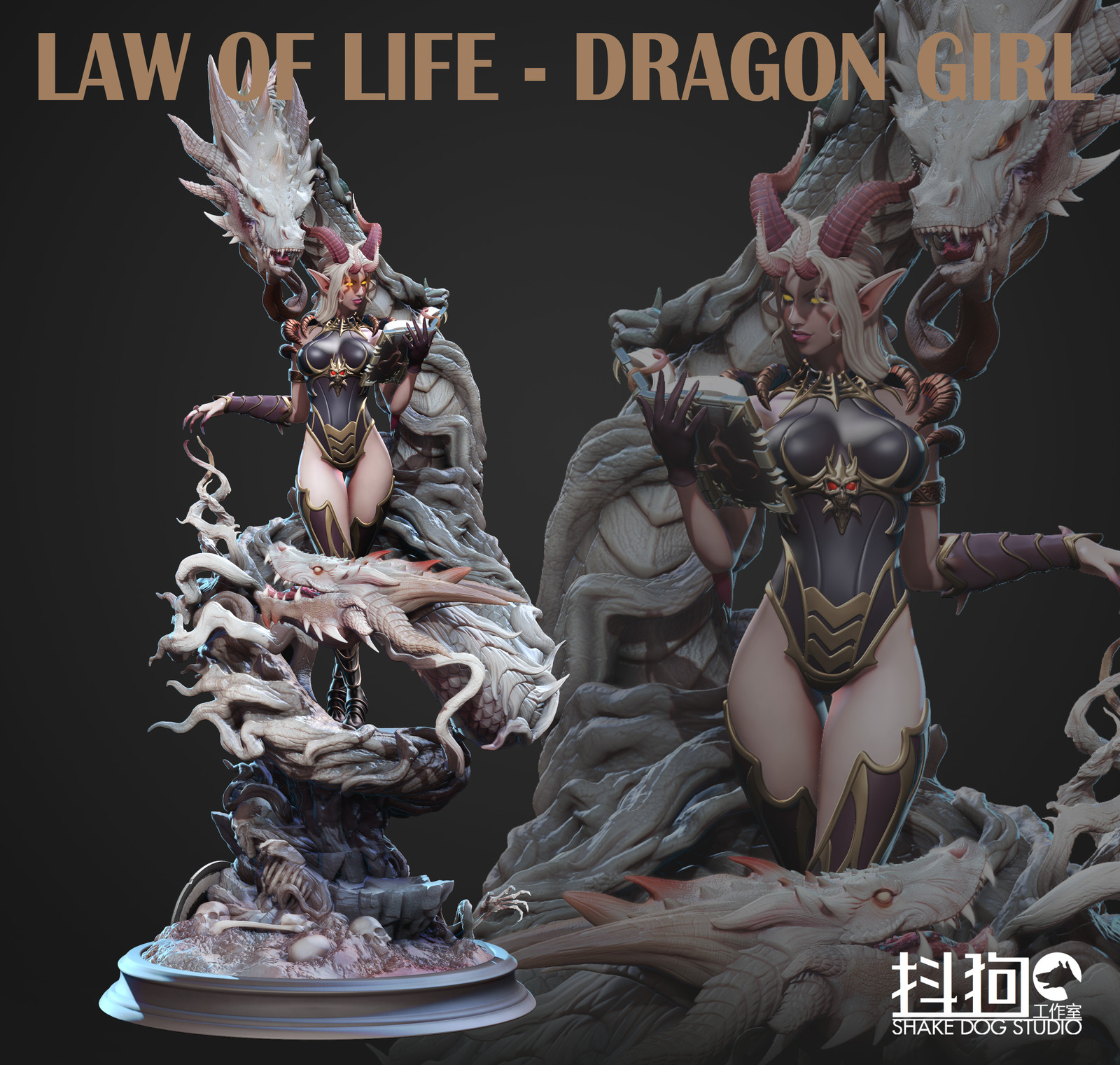 LAW OF LIFE - Dragon Girl