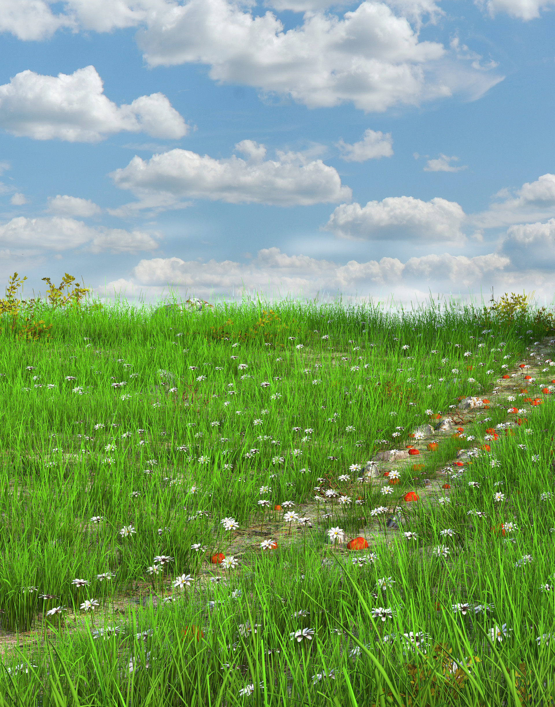 Marc mons meadow7