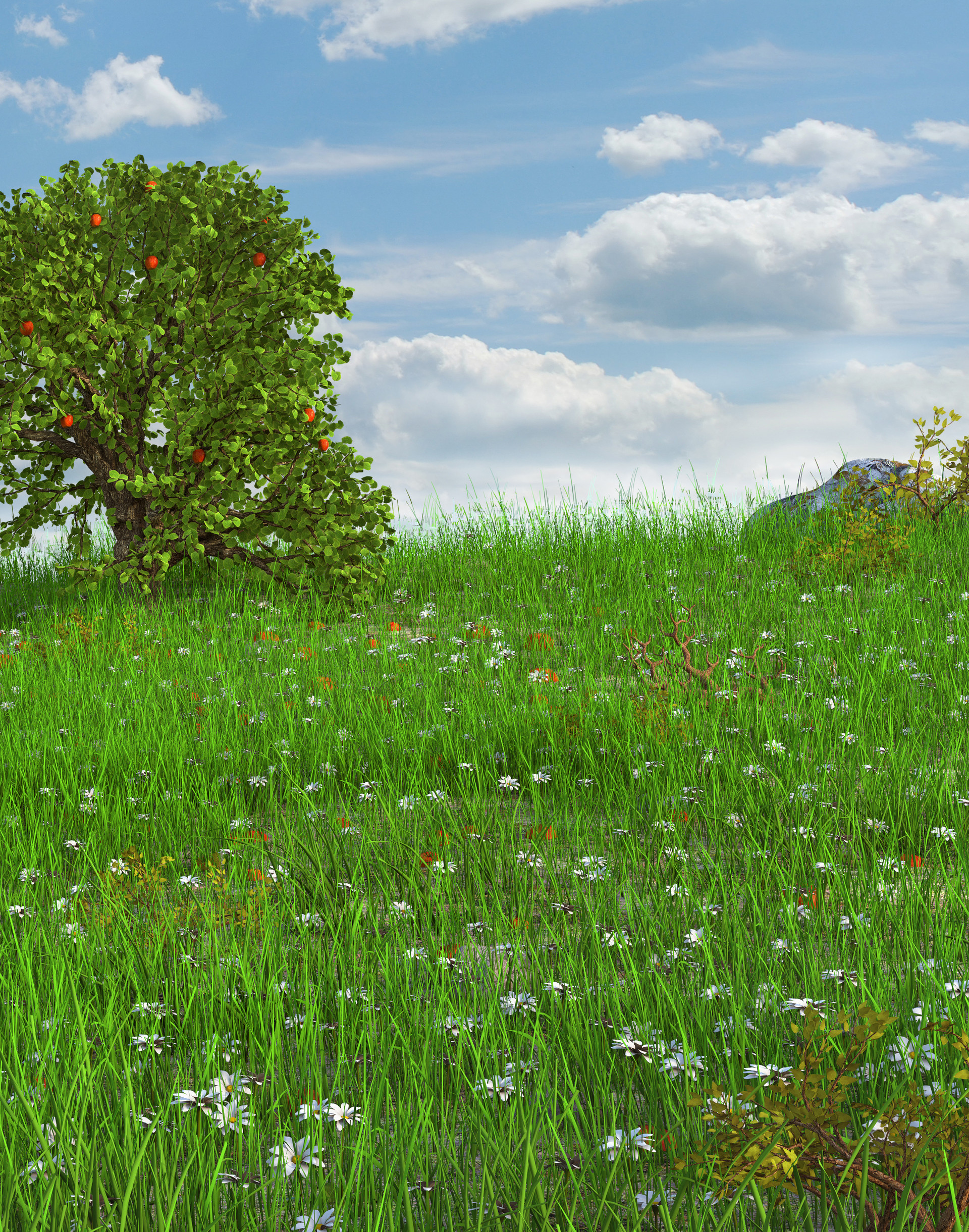 Marc mons meadow8