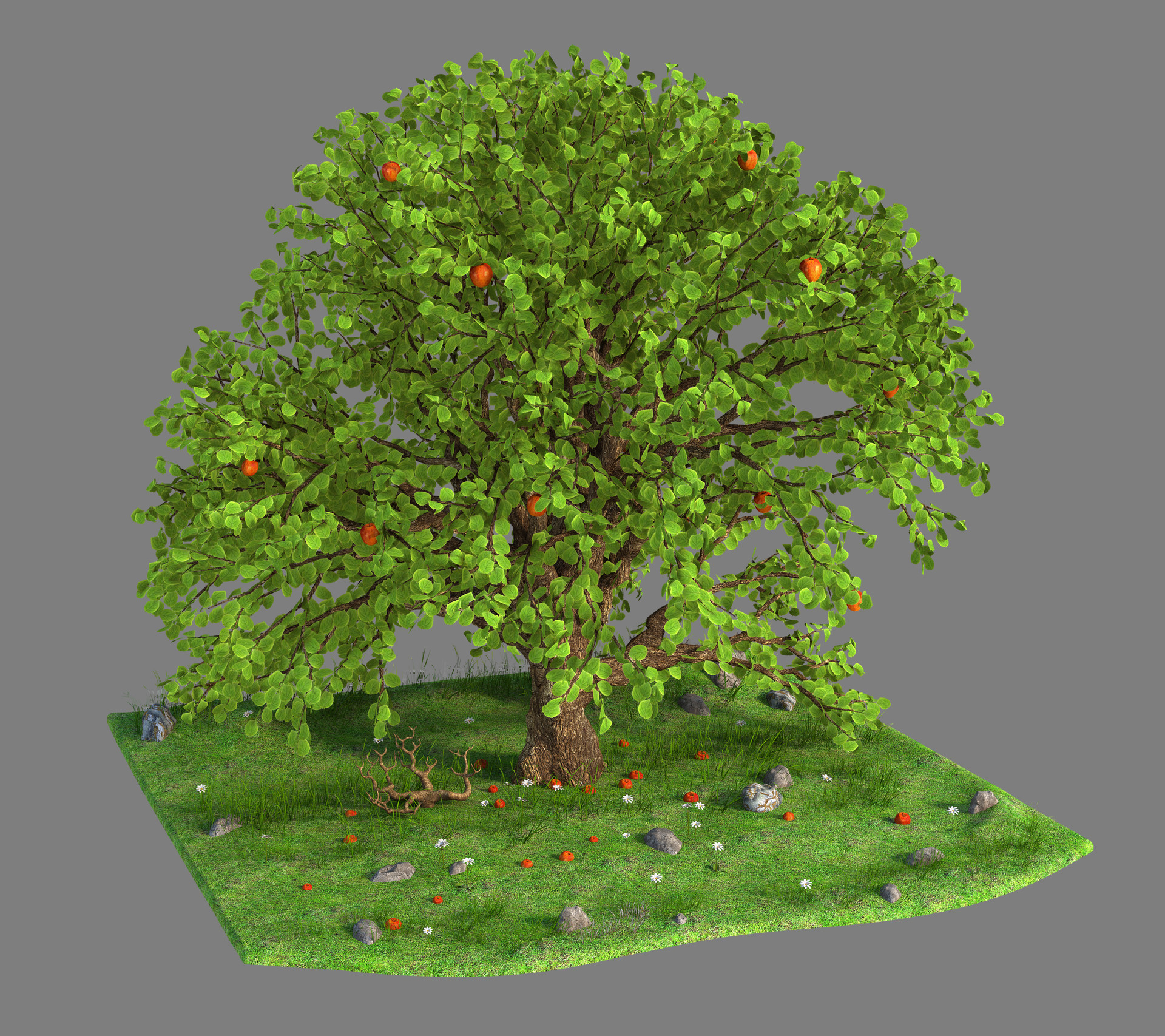 Marc mons tree2