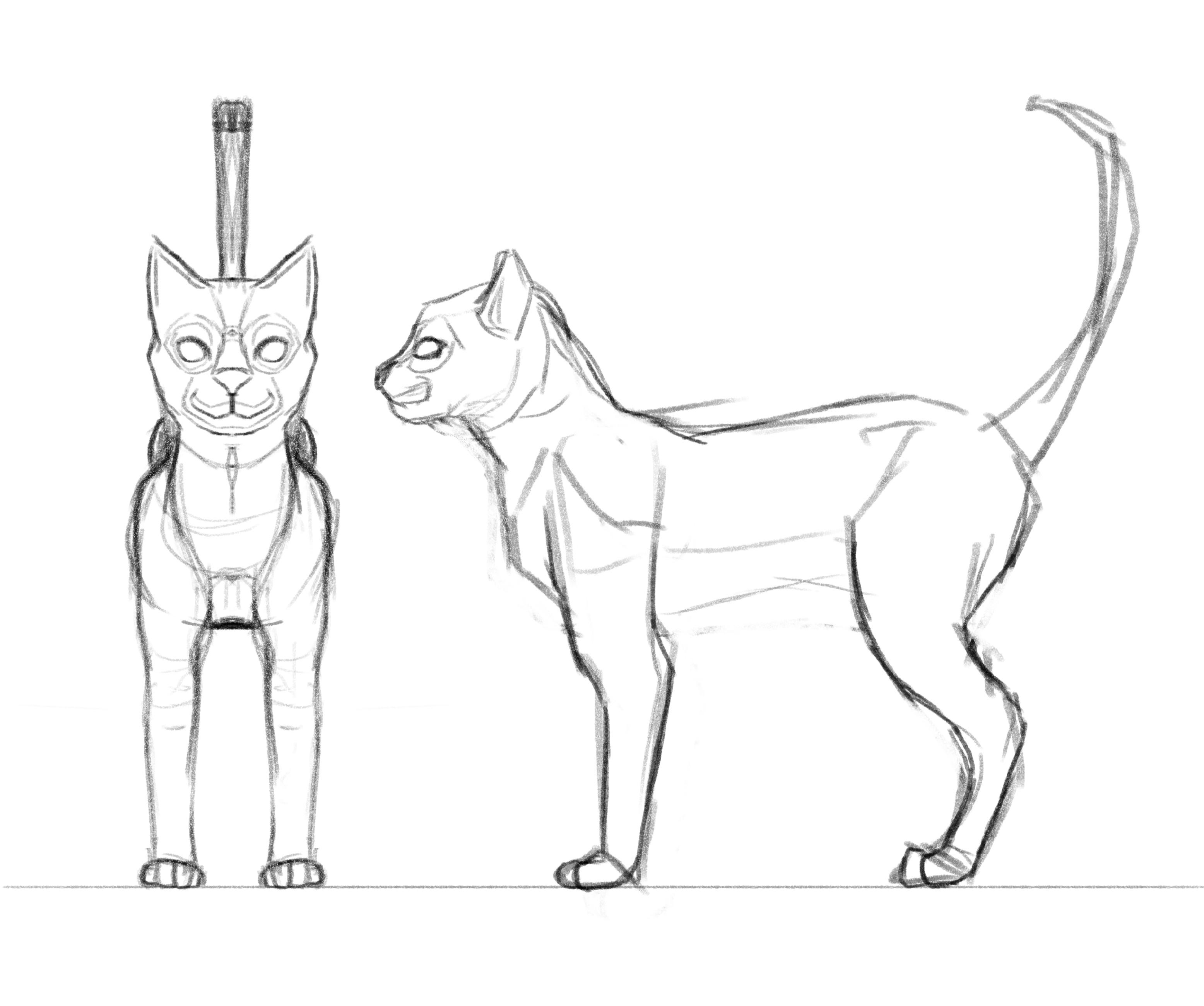 Cat Initial Concept