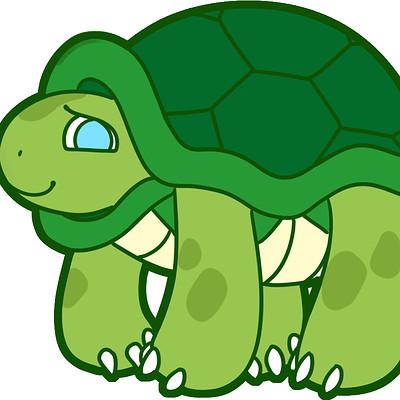 Micah otto turtle
