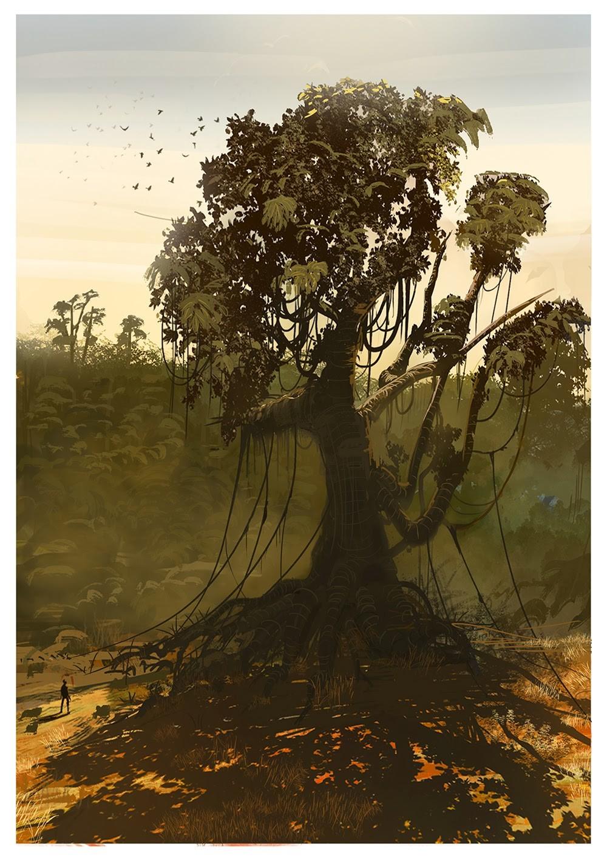 Bohlool belarak giant tree