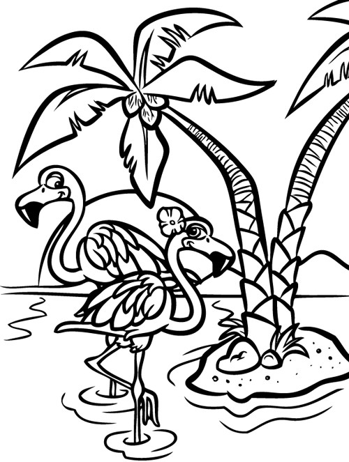 Steve rampton flamingos