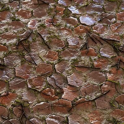 Sandy Tiles