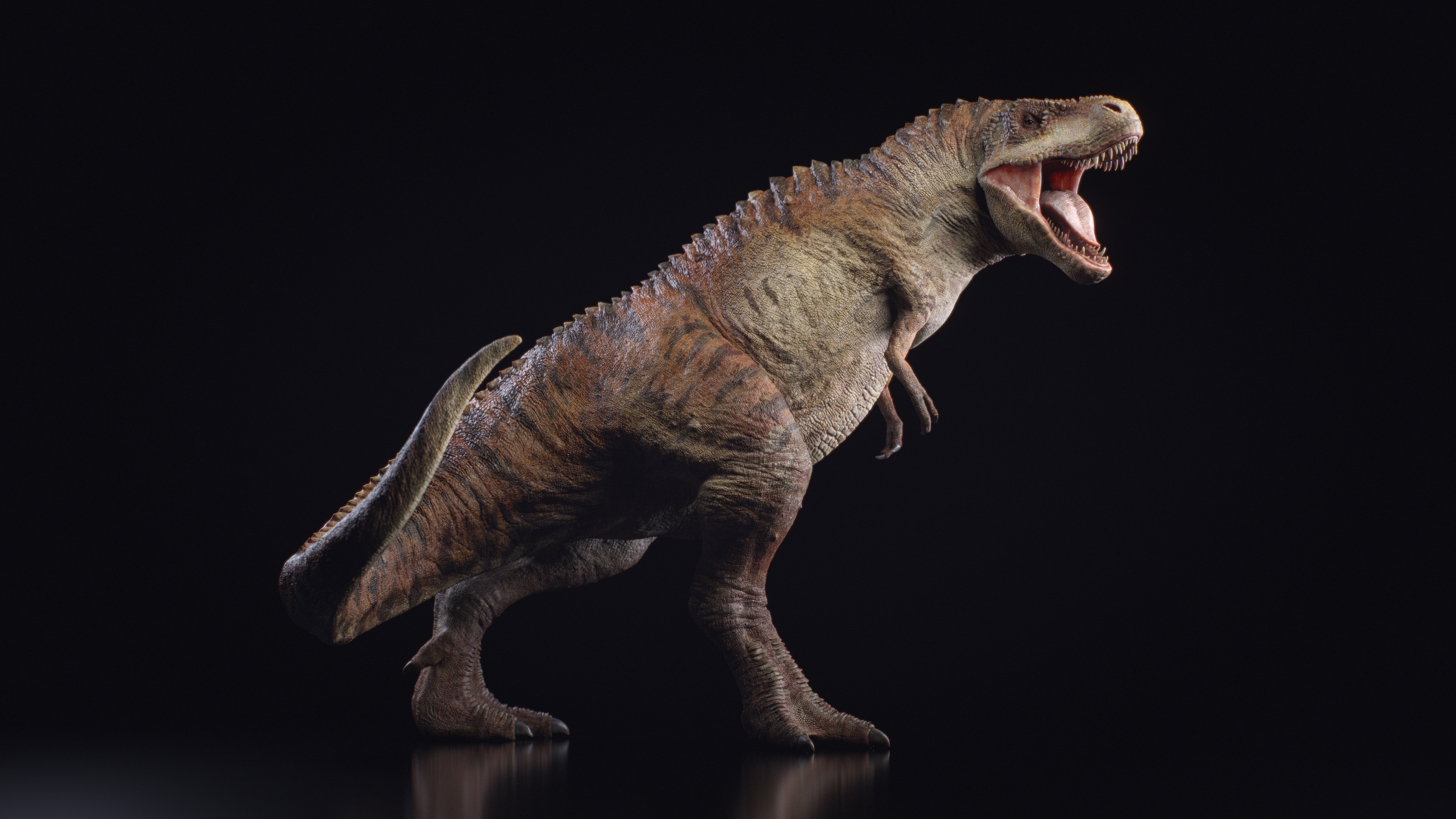 Tyrannosaurus Rex, done for Axis Animation.