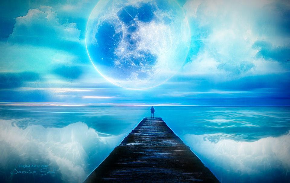 The Moonlight Dreams