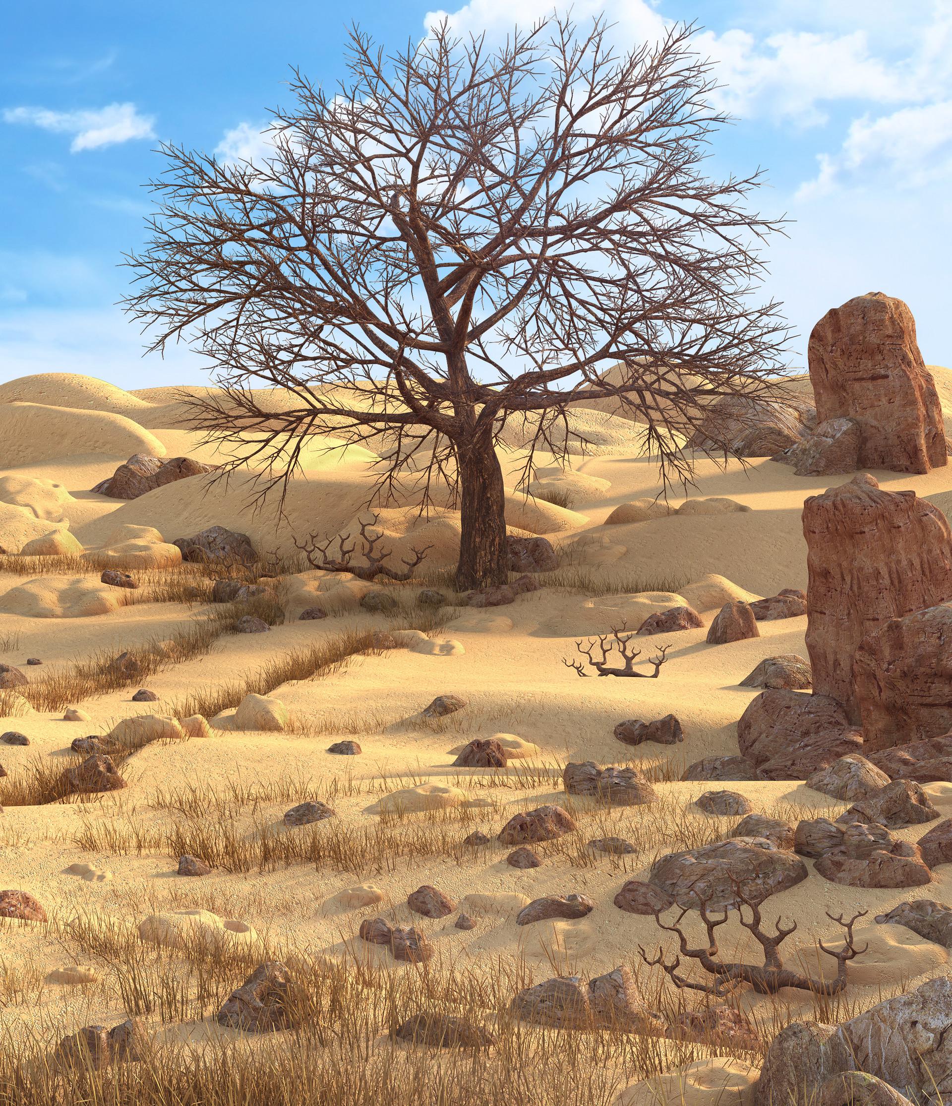Marc mons desert3