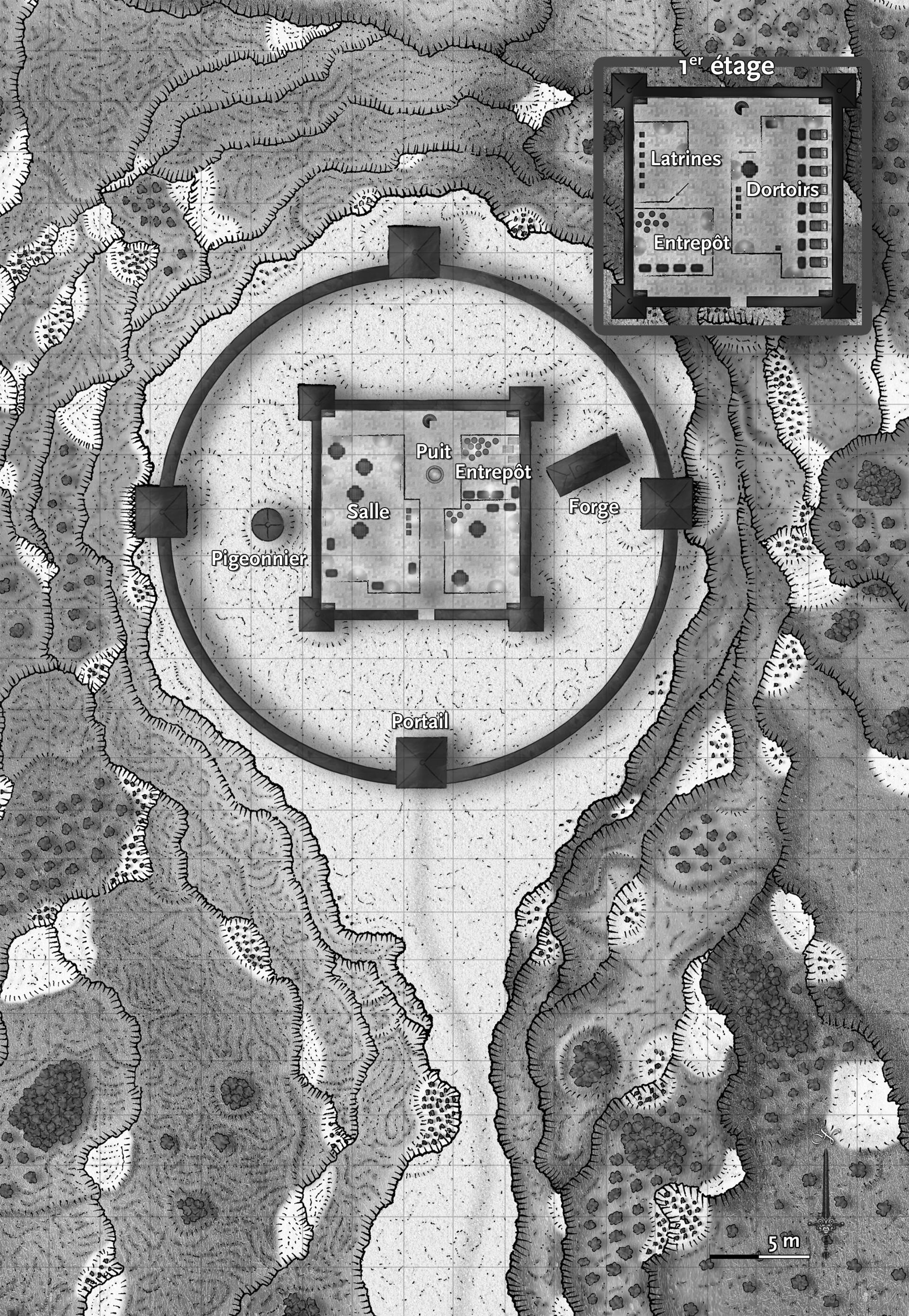 Ronan salieri forteresse nb