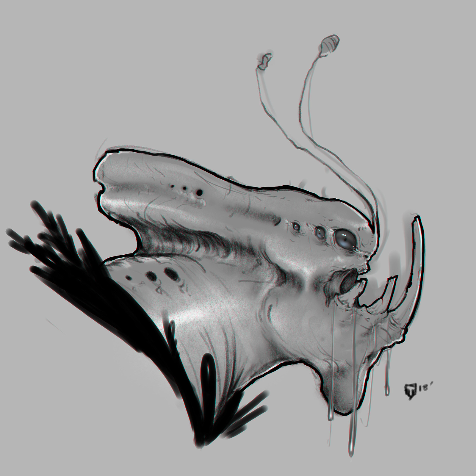 Creature Head Sketch