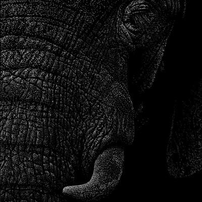 Patrik roy elephant v1 0 1043x1600px