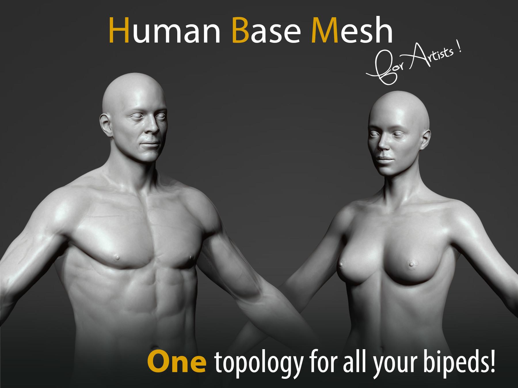 Pascal ackermann human bm cover