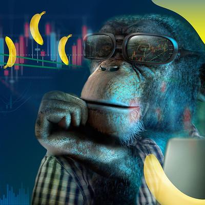 Sandy galabadaarachchi monkey2