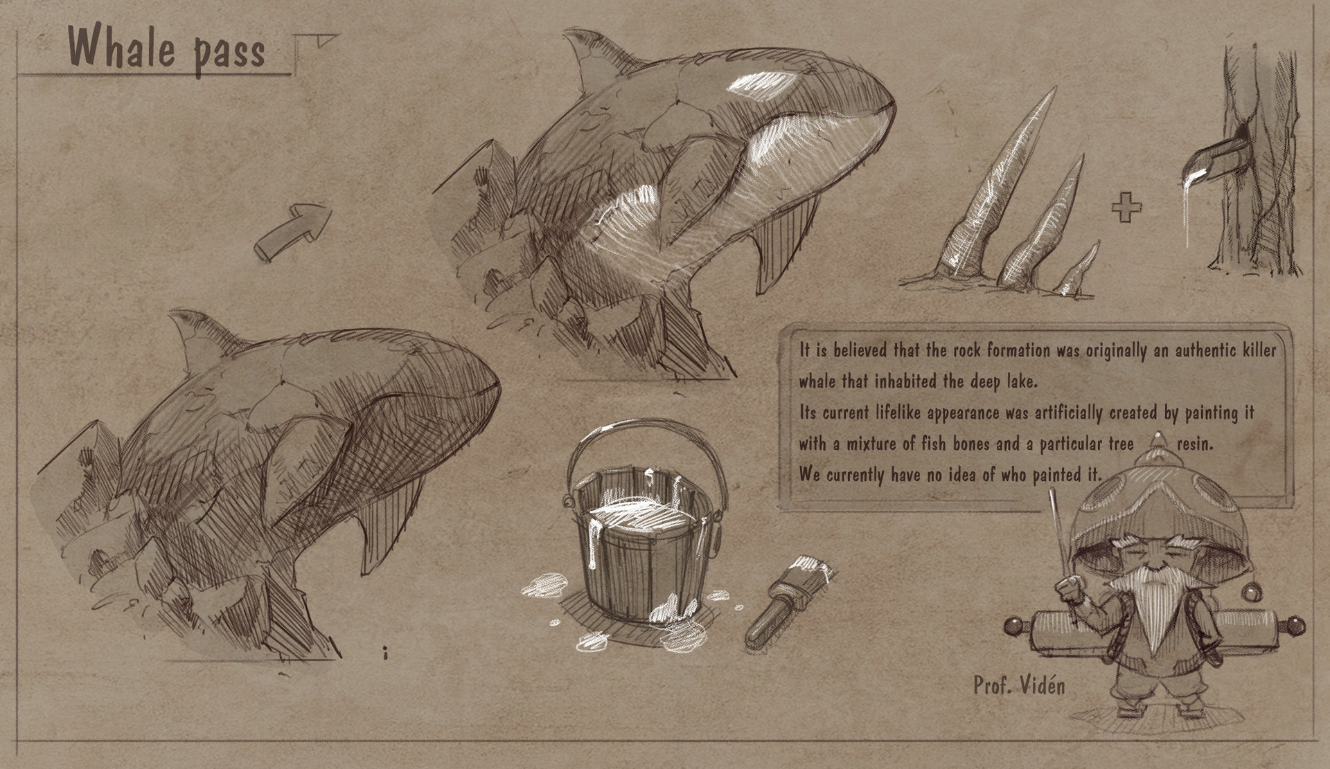 Roberto gatto callout whale
