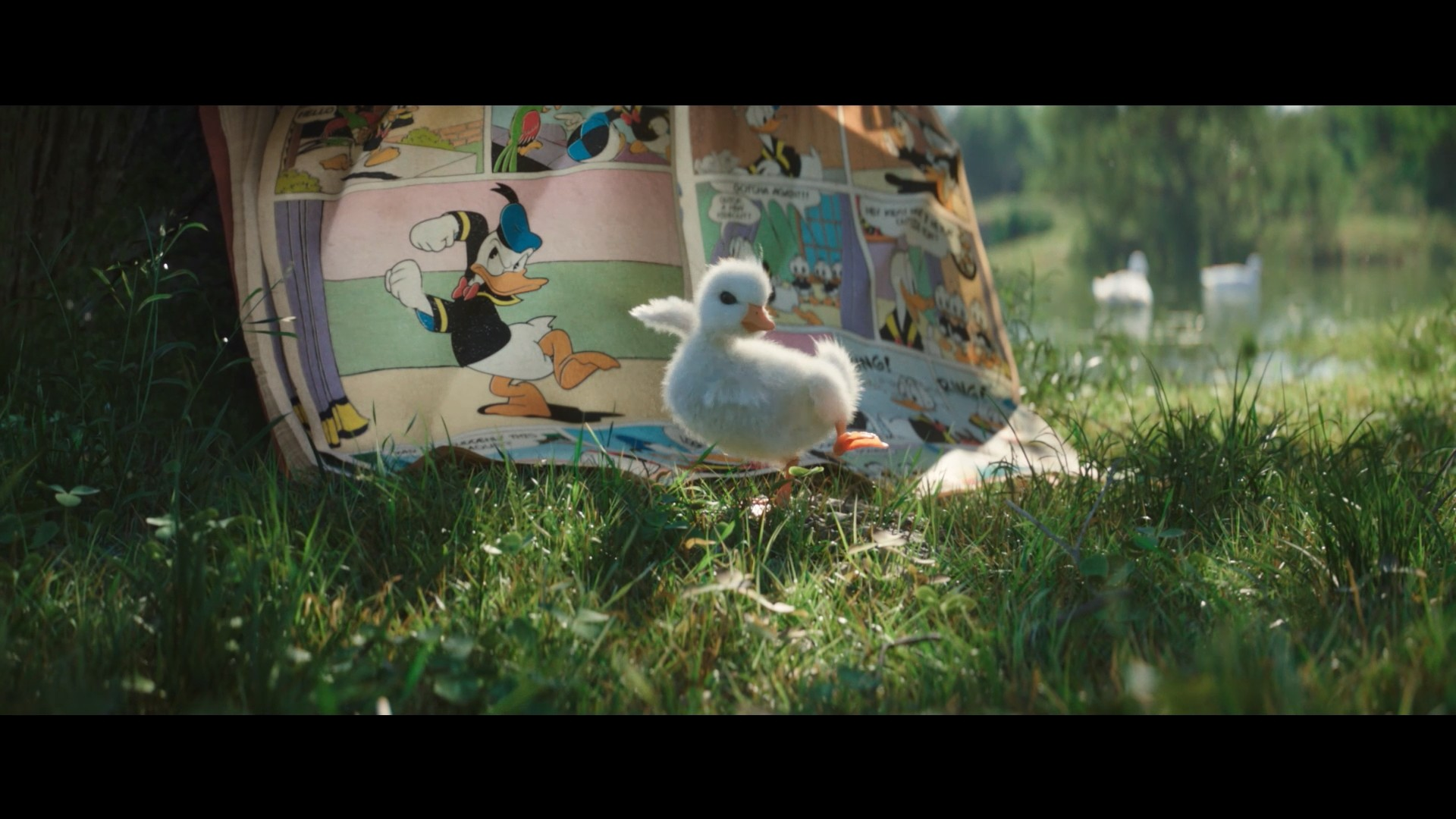 Quentin chaillet disneyduck 60s hd uk mp4 snapshot 00 16 2018 12 31 18 54 44