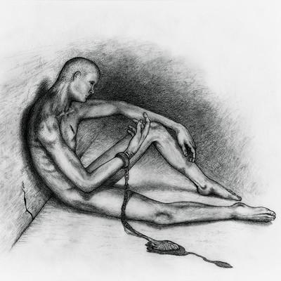 Darren levine prisoner of my own heart
