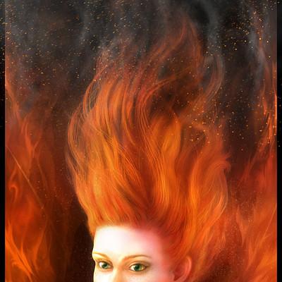Darren levine wildfire