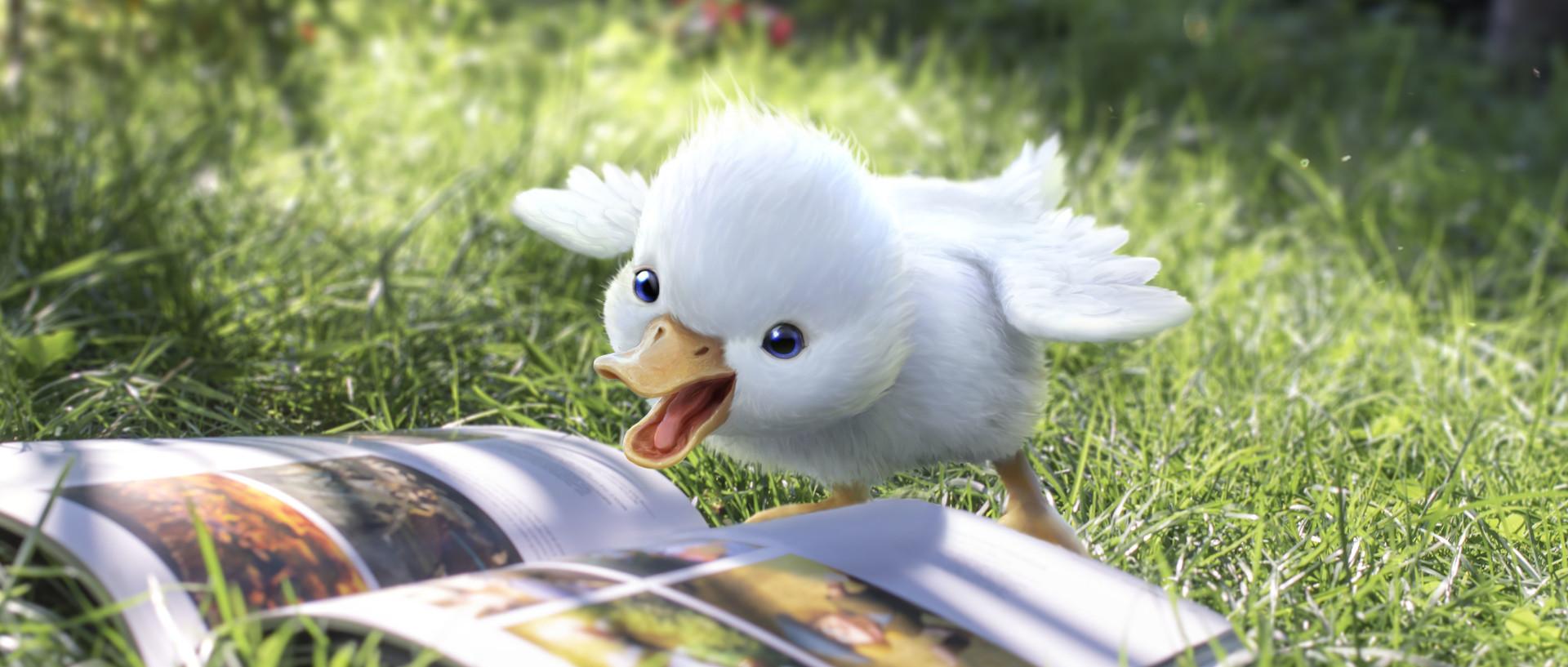 Loic liok bramoulle stillframe duck 03