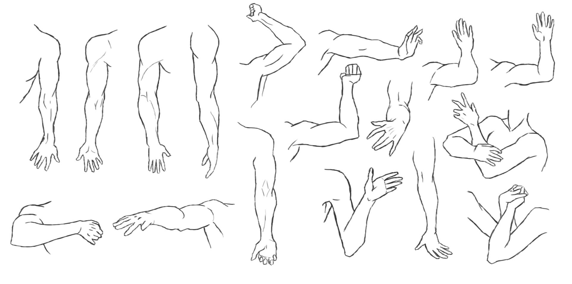 Artstation Reference Drawing Practice Dick Van Kempen