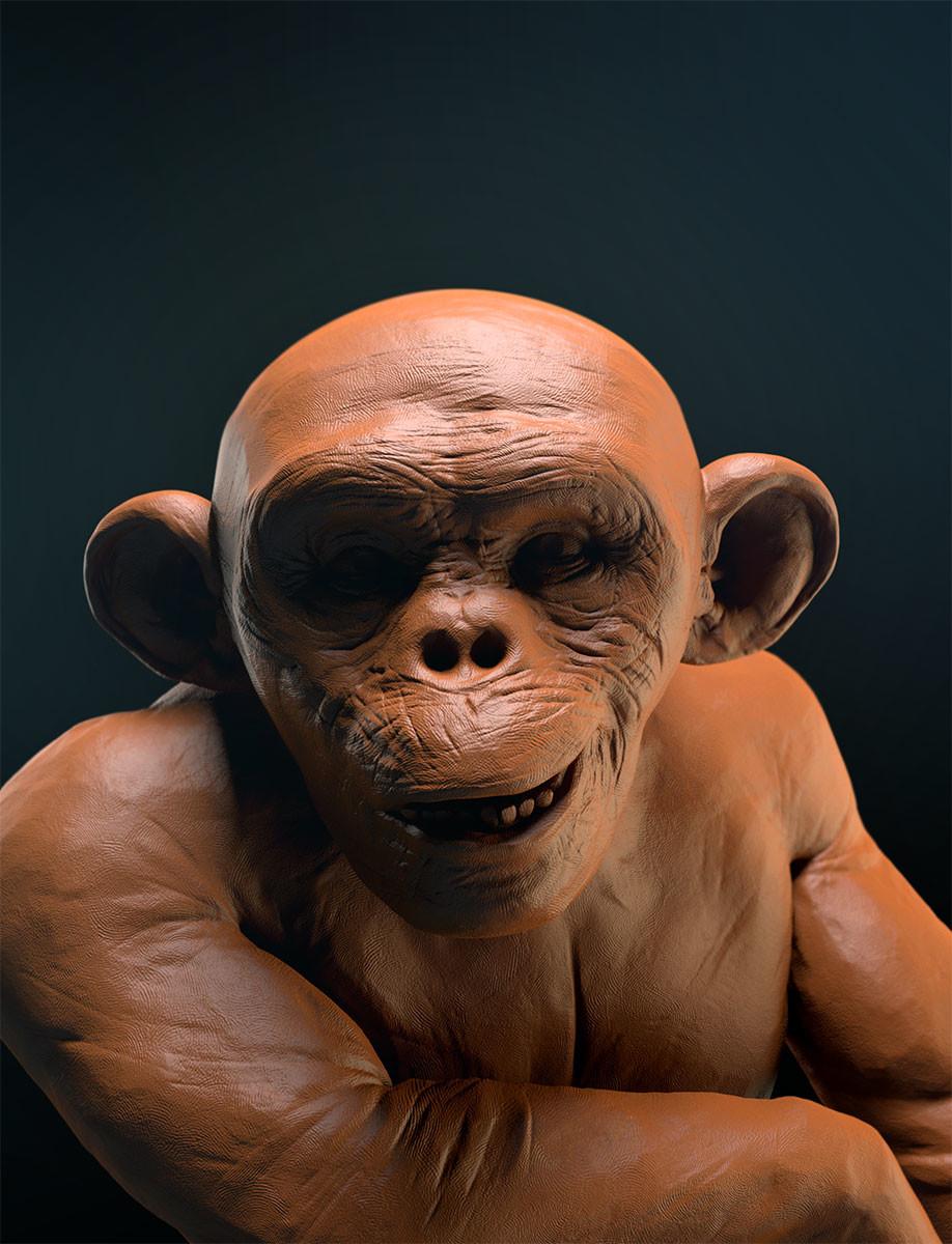 Pablo munoz gomez the chimpanzee