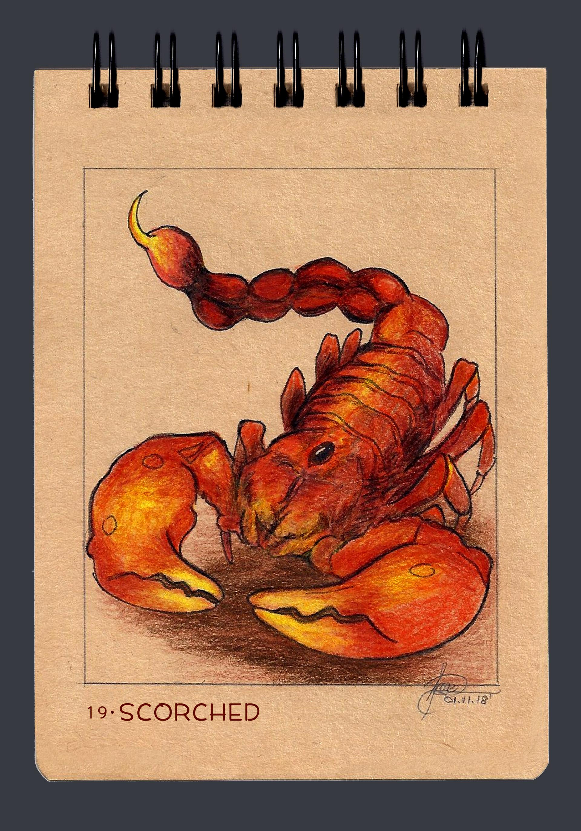 Angelica zurawski 181101 scorched