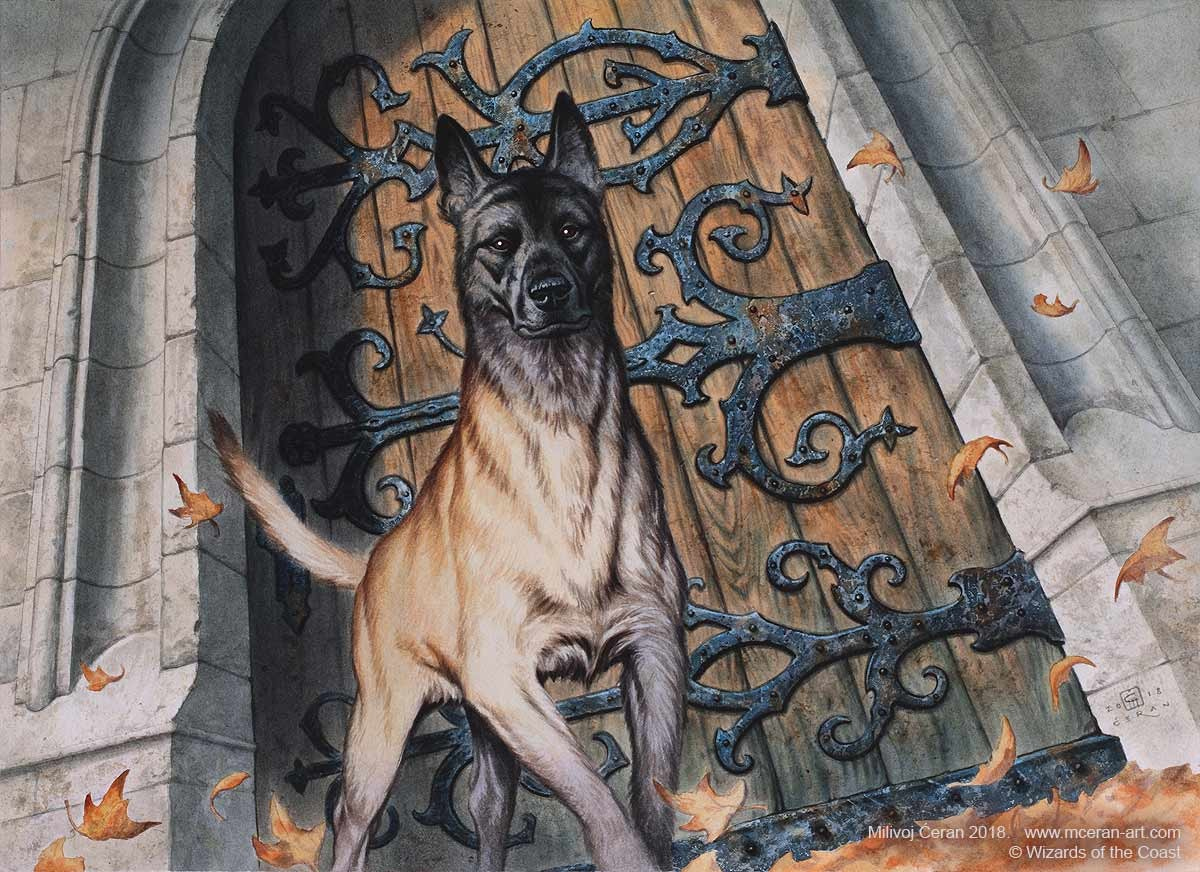 """Resolute Watchdog"" Milivoj Ćeran 2018.