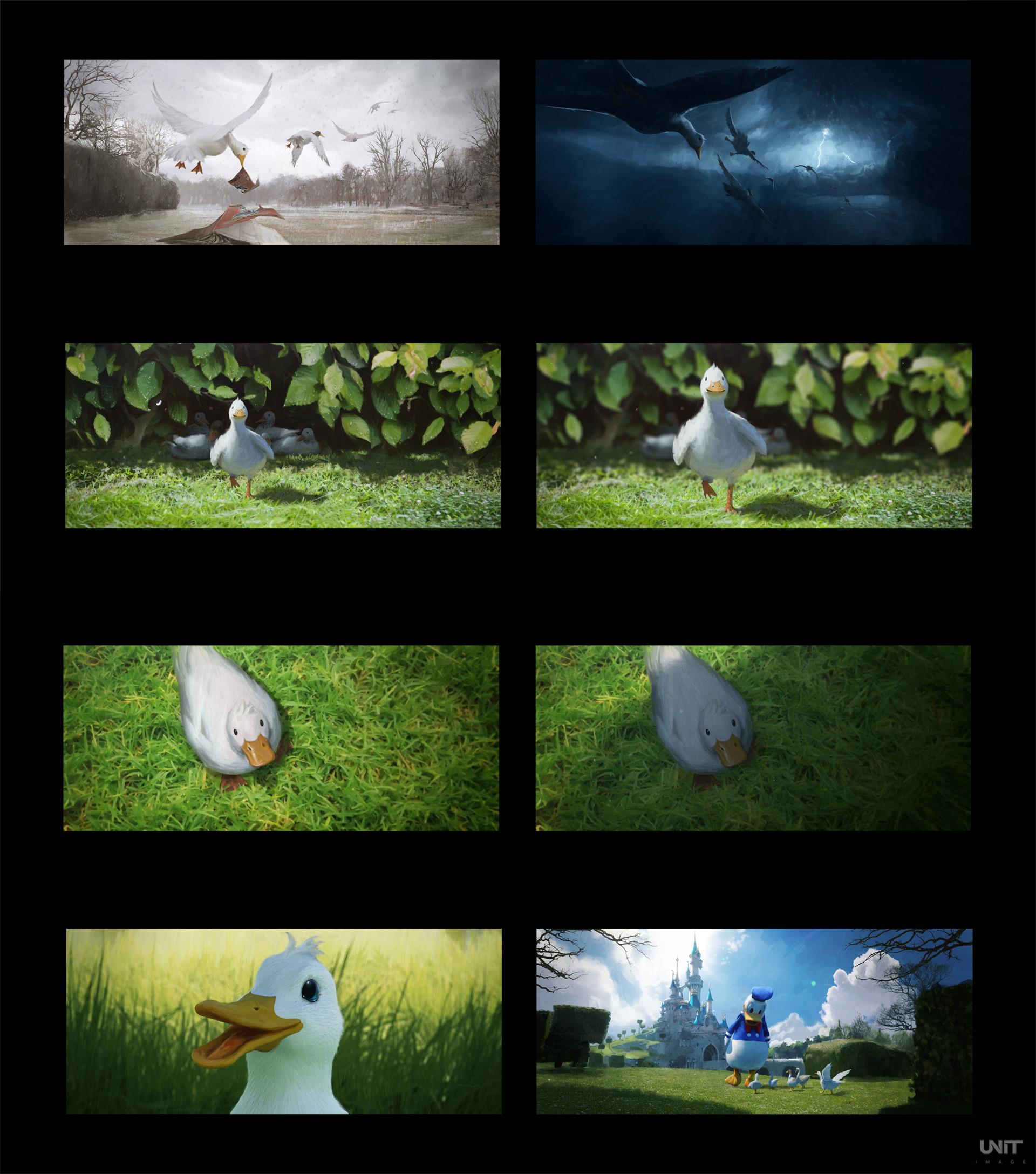 Jeremy paillotin canard 20180620 shot07 v004 jp