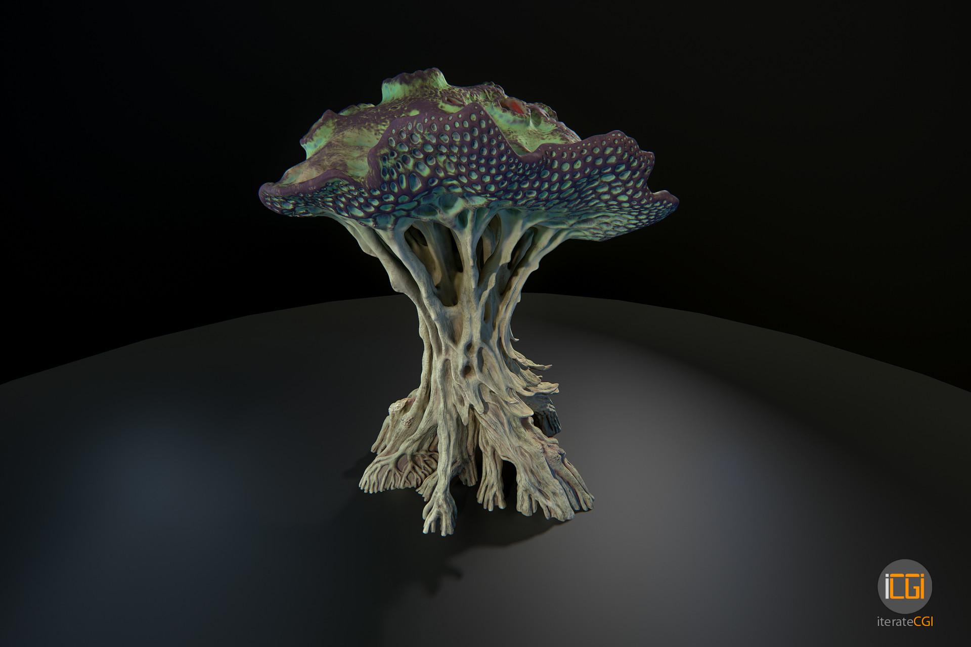 Johan de leenheer alien plant mushroom type2 9